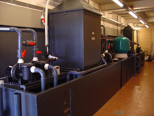 Filtertechniek showaquaria Aquapolis Neeltje Jans